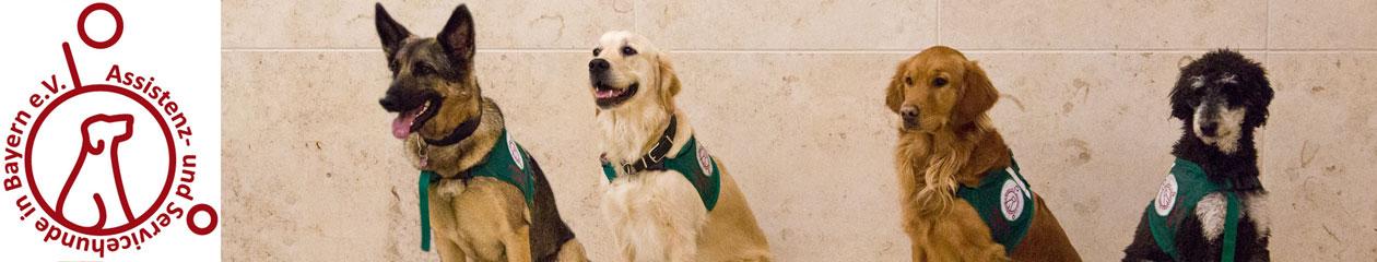 Assistenz- und Servicehunde in Bayern e. V.